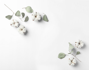 Composition with cotton flowers on white background, top view. Space for text