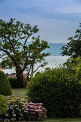 Heavenly little garden near by the lake
