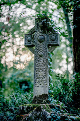 Celtic stone cross monument covered with ivy on a graveyard