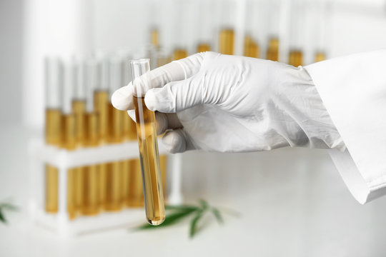 Doctor holding test tube with urine sample for hemp analysis, closeup