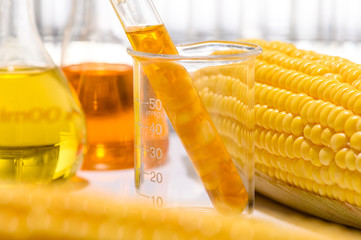 the natural product extract, oil and biofuel solution, in the chemistry laboratory