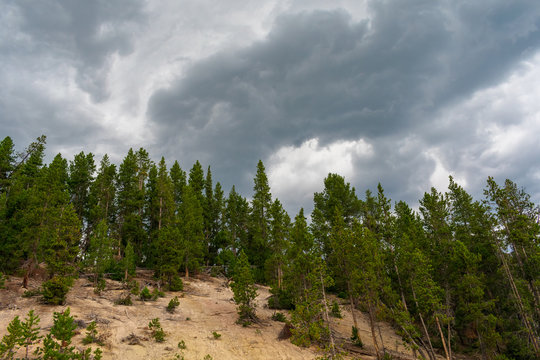 Geyser Area Yellowstone National Park