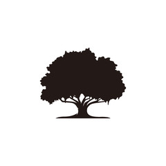 Oak tree icon vector
