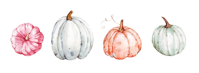 Beautiful pumpkins on isolated white background. Autumn set of elements on isolated white background. Watercolor illustration. Hand drawing. It is perfect for thanksgiving cards or posters, halloween