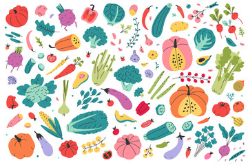 Collection of colored hand drawn fresh vegetables isolated on white background. Big bundle of tasty vegetarian products, wholesome healthy food. Flat cartoon doodle vector illustration, farming market
