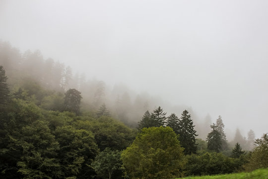 Misty weather on Smoky mountains in North Carolina, USA