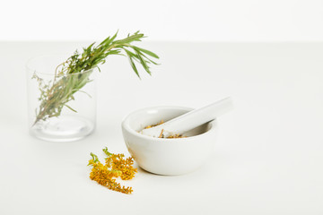 Acrylic Prints Plant mortar and pestle with herbal mix and and glass with fresh plants on white background