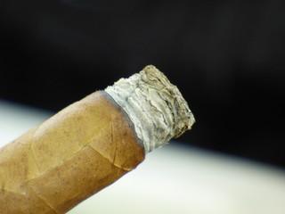 Asche einer Zigarre