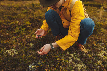 young hiker picking and eating blue berries on the mountain, close up cropped photo, free time, spare time