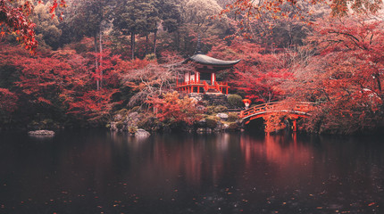 Daigo-ji temple in autumn season at japan