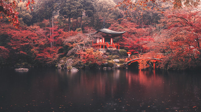 Daigo-ji temple in autumn season at japan