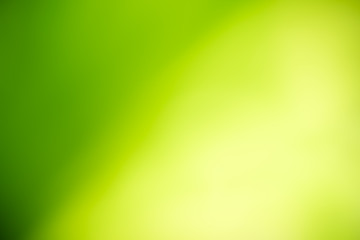Abstract lights of green nature using as background or wallpaper concept.