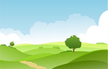 landscape summer green fields with grass,trees,white cloud and blue sky .vector