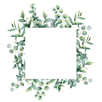 Watercolor eucalyptus invitation square card. Hand painted illustration with eucalyptus branches and leaves isolated on white background. Floral illustration for design, print, fabric or background.