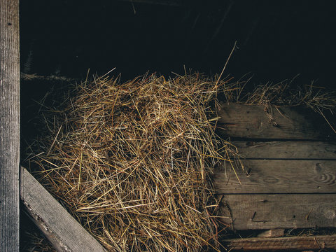 Wooden barn with hay bale coming out. Hay bale, wheat for farm animals. Wood texture, food, dry.