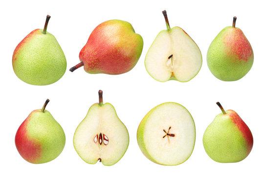 Seckel pears p. communis, paths