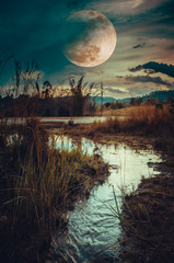 Wall Mural - Landscape at night time in the forest lake and darkness sky super moon in the background.