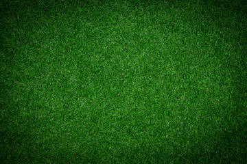 Green Artificial Grass Background and Texture.