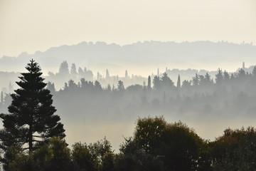 Poster Morning with fog Korfu