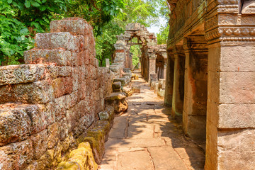 Wall Mural - Awesome walkway among scenic ruins of Ta Prohm temple, Angkor