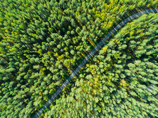 Aerial view of a country road in the forest with moving cars. Beautiful landscape. Captured from above with a drone. Aerial road with car. Aerial top view forest. Texture of forest view from above Wall mural