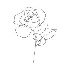 Continuous Line Drawing. One Line Rose Drawing. Minimalist Floral Design. Rose Contour Drawing. Vector EPS 10.