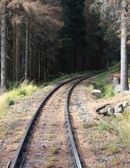 Bahnstrecke in die Tiefen des Waldes