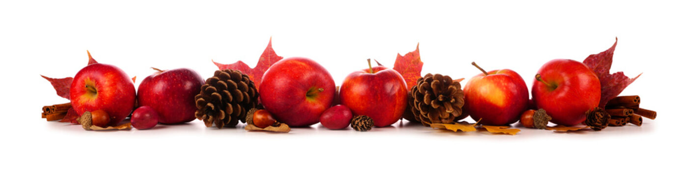Autumn border of apples, leaves, and fall decor. Side view isolated on a white background.