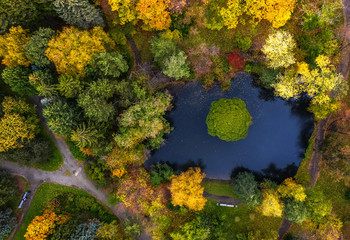 pond in autumn Park with paths, the view from the drone