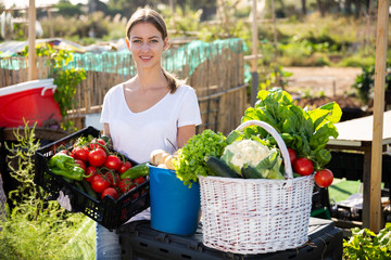 Fototapete - Young woman gardener holding basket with harvest of vegetables
