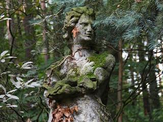 Einsamer Mann im Wald