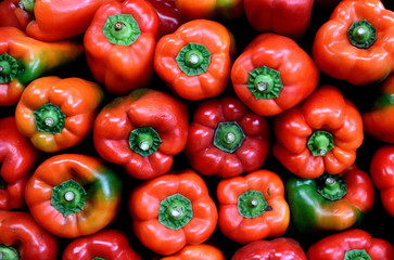 Fresh Colombian red bell peppers, farmers produce market, Colombia