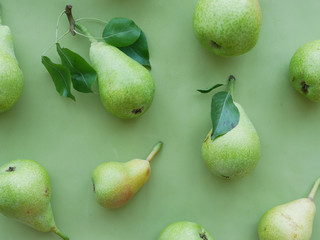 Fototapete - Green pears on a green background, top view, flat lay. Fruit pattern.