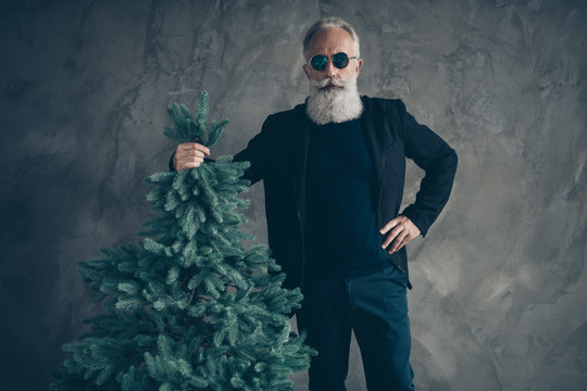 Portrait of gorgeous harsh masculine man in eyewear eyeglasses holding fir tree wearing black trousers pants isolated over grey background