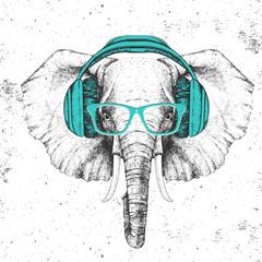 Hipster animal elephant with headphones. Hand drawing Muzzle of animal elephant