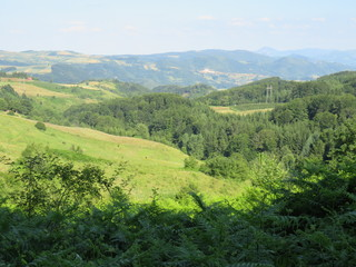 Spoed Foto op Canvas Khaki Green sunny valley - landscape with hills slopes