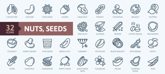 Fototapeta Nuts, seeds and beans elements - minimal thin line web icon set. Outline icons collection. Simple vector illustration. obraz