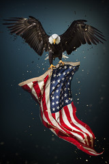 Fototapete - American Bald Eagle flying - symbol of america -with flag. United States of America patriotic symbols.