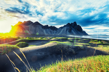 Dramatic sunny day and gorgeous rippled black sand beach and green grass on Stokksnes cape in Iceland.