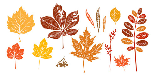 Wall Mural - Autumn orange leaves silhouette isolated.