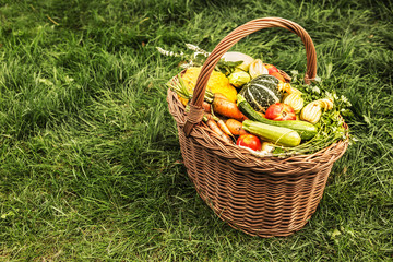 Colorful vegetables in wicker basket outdoor on green grass