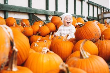 Child picking pumpkins at pumpkin patch. Wall mural