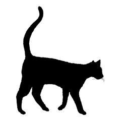 Walking Cat SIlhouette. Vector Black Feline Logo.