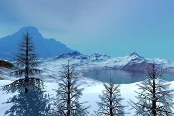 Snowy trees, a winter landscape, reflection in the sea and a mountain in the background.