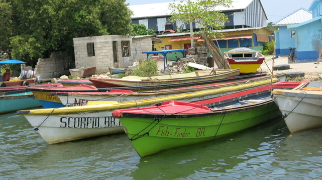 Boats on the Black River, Jamaica