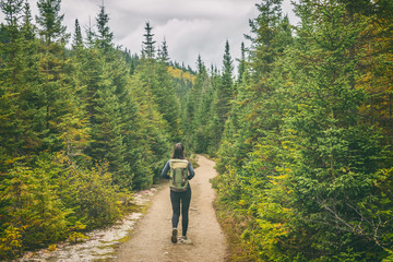 Wall Mural - Hiker travel woman walking on trail hike path in forest of pine trees. Canada travel adventure girl tourist trekking in outdoors nature.