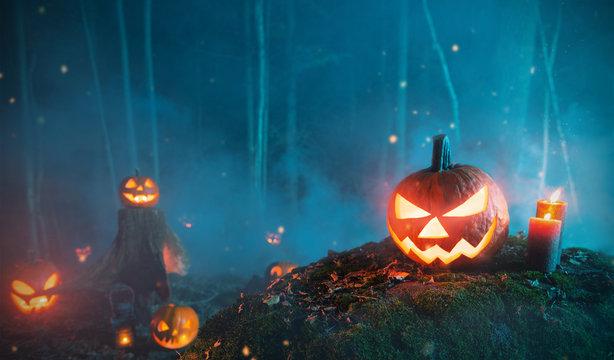 Spooky halloween pumpkins in forest