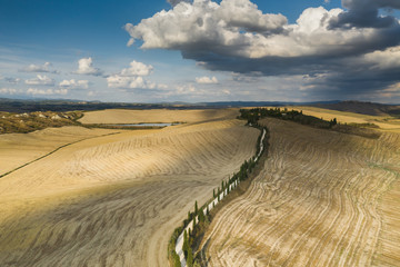 Sweet Autumn colors in Tuscany Landscape