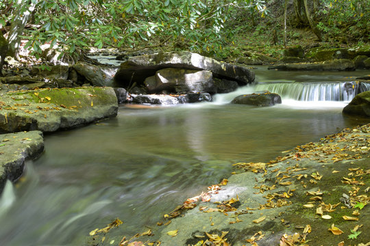 Mountain trout stream in Shenandoah National Park in the Blue Ridge Mountains of Virginia