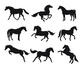 Vector flat black set bundle of horse silhouette isolated on white background